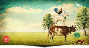 Geboortekaartje boerderij met boerderijdieren zoals het schaap, haan en koe. Voor alle gezinnetjes die op een boerderij wonen of op het platteland. En daar hoeft niet eens een koe rond te lopen hoor.