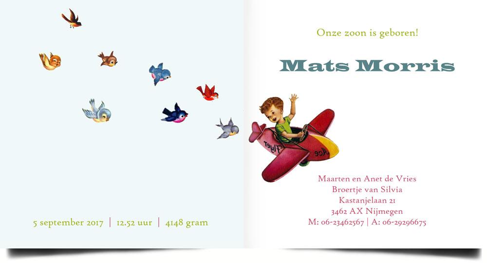 Een vrolijk retro geboortekaartje! Geïnspireerd door de oude verhalenboekjes dit geboortekaartje met vliegtuig en vogeltjes.
