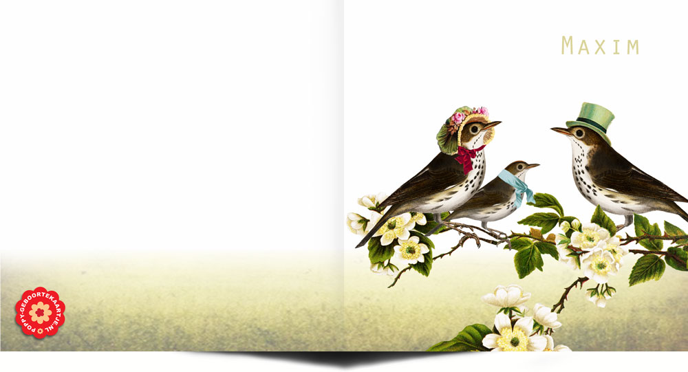 Geboortekaartje nostalgisch met vogels in victoriaanse kledij. Een knipoog naar vintage geboortekaartjes.