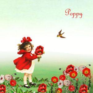 Geboortekaartje nostalgisch meisje met klaprozen. Een prachtig lente geboortekaartje met bonte bloemen. Vintage geboortekaartje dat tijdloos zal zijn.