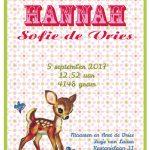 Retro geboortekaartje met retro bambi hertje. Geboortekaartjes geïnspireerd door het retro alfabet