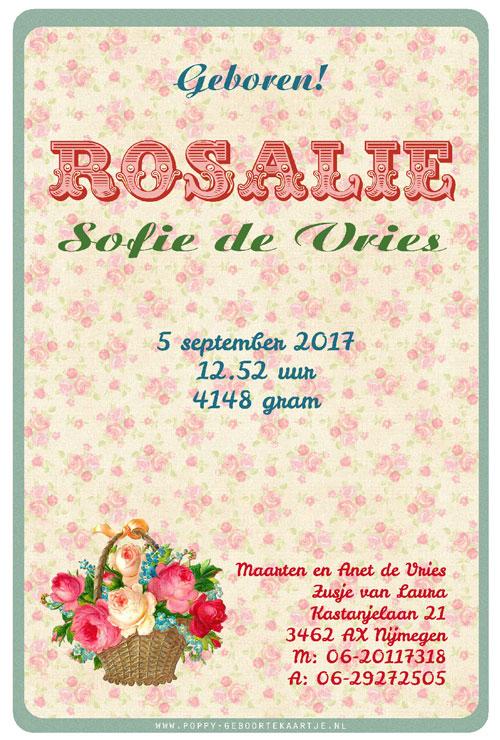 Retro geboortekaartje met retro afbeelding van mandje met rozen. Geboortekaartjes geïnspireerd door het retro alfabet