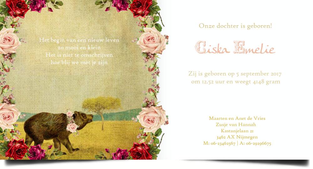 Geboortekaartje met nostalgische look, beren en botanische prents, geïnspireerd door elementen van vroeger zijn er een reeks geboortekaartjes ontworpen die uitstekend passen in de nostalgische, retro èn vintage stijl.