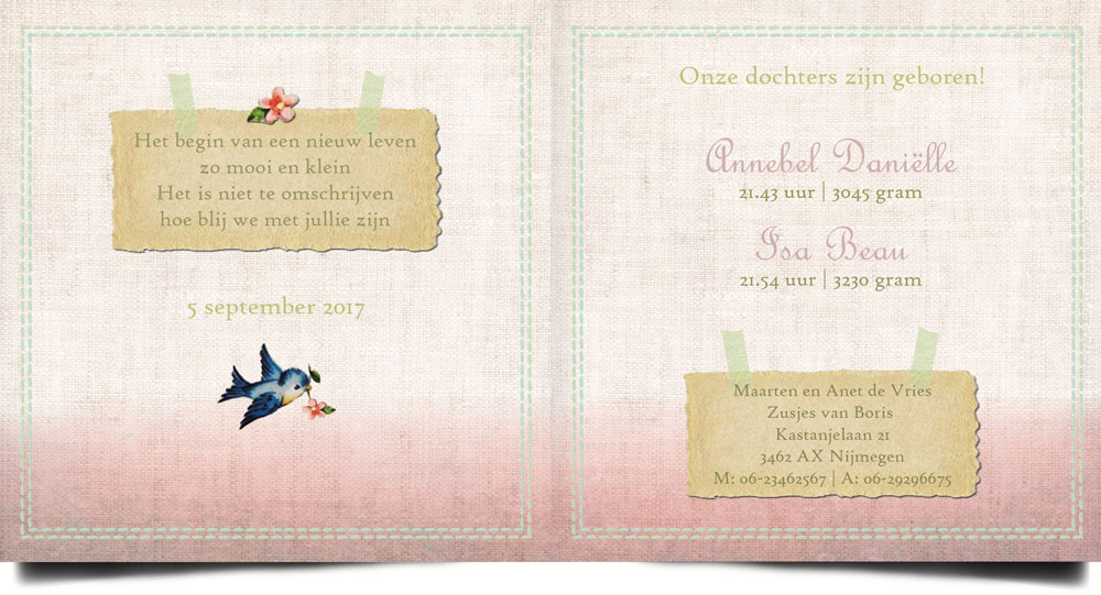 Geboortekaartje met vintage look, geïnspireerd door elementen van vroeger zijn er een reeks geboortekaartjes ontworpen die uitstekend passen in de nostalgische, retro èn vintage stijl. Het vogeltje op de bloesemtak maakt het tot een lief geboortekaartje.