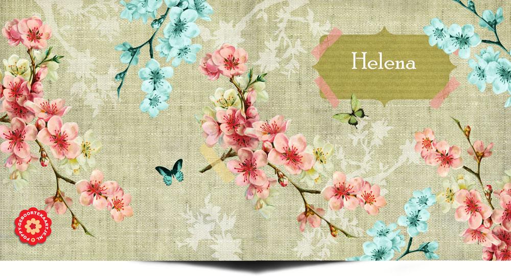 Geboortekaartje lente met appelbloesem en vlinders. Nostalgisch vintage geboortekaartje.