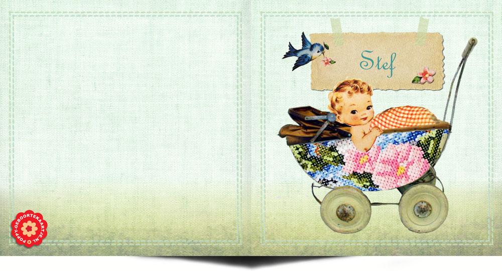 Geboortekaartje nostalgisch vintage met nostalgische details. Een prachtige gedecoreerde geboortekaart met nostalgische afbeeldingen van een vogeltje en baby in wandelwagentje. Een geboortekaartje met een knipoog naar vroeger maar in een jasje van nu.
