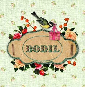 Geboortekaartje nostalgisch vintage met vogels. Een prachtige gedecoreerde geboortekaart met nostalgische afbeeldingen van vogels, vlinders en bloemen. Een geboortekaartje met een knipoog naar vroeger maar in een jasje van nu.