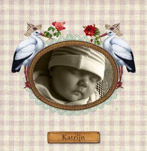 Geboortekaartje nostalgisch met foto. De foto heeft een vintage kader met ooievaars. Het geruite stofje als basis maakt het af.