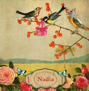 Geboortekaartje nostalgisch vintage met vogels. Een prachtige gedecoreerde geboortekaart met nostalgische afbeeldingen van vogels, vlinders en bloemen.Een geboortekaartje met een knipoog naar vroeger maar in een jasje van nu.