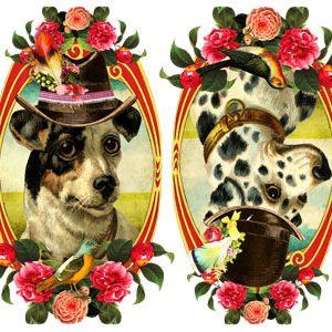 Muursticker met hondjes zijn net schilderijtjes en zijn ideaal voor een vintage georiënteerde kamer. Alleen dan nu in een modern jasje. De stickers zijn van mat vinyl en ijzersterk. Muursticker nostalgisch met oog voor detail. Muurstickers waarin het beste van vintage en retro samen komen. Ideaal voor vintage kinderkamer of retro speelhoekje. Afbeeldingen van zebra, beer, konijn, schaap, poes, zwaluw en nog veel meer.