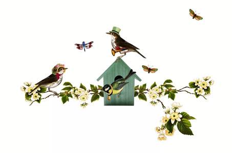 Muurstickers Tak Met Vogels.Muursticker Bloementak Met Vogels Poppy Geboortekaartje Nl