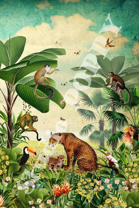 Ansichtkaart jungle. Ansichtkaart met in de jungle met jaguar, toekan, aap, vogels en vlinders van Studio POPPY is met veel aandacht en zorg gemaakt. Geschikt om te versturen maar ook leuk als begeleidend schrijven bij een kado. Of een ansichtkaart inlijsten misschien? Wat je er ook mee doet, met deze vrolijke ansichtkaarten maak je een ander blij.