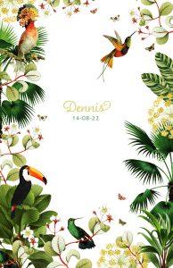 Jungle geboortekaartje met kolibrie, toekan, planten en bloemen.