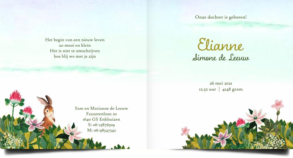 Geboortekaartje lente of zomer met bloemen en konijntjes.