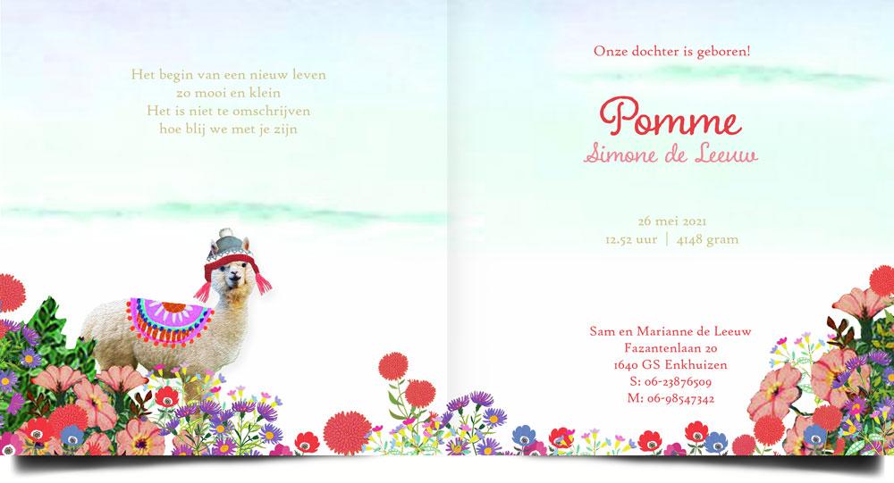Lente geboortekaartje met bloemen en alpaca. Nostalgische en retro geboortekaartjes van Studio POPPY.