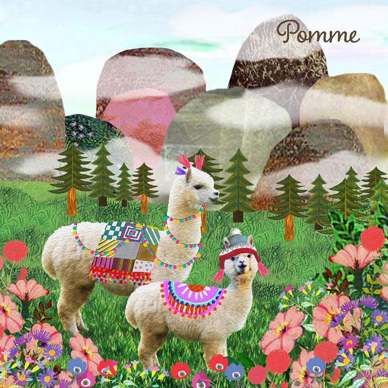Geboortekaartje alpaca