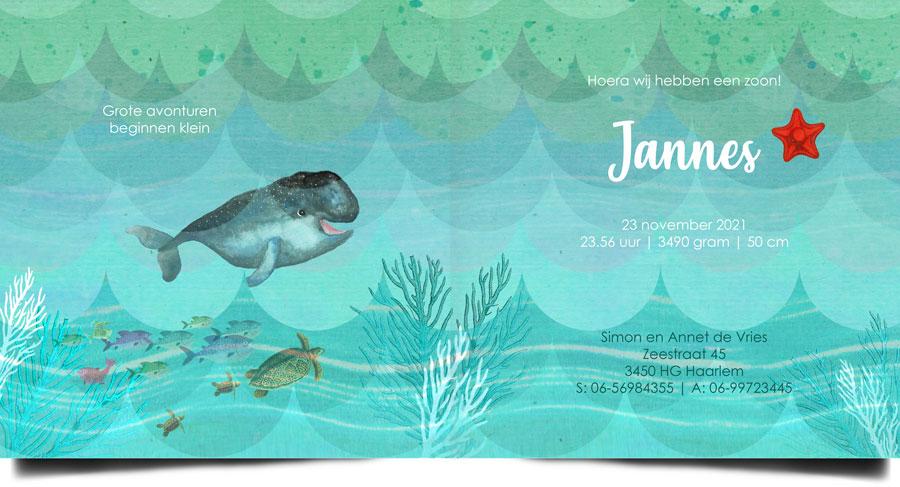 Retro geboortekaartje met walvis, de zeehond en pinguïn reizen met hem mee door de zee. Aan de binnenkant zwemt zelfs een schildpad met haar jongen.