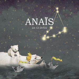 Geboortekaartje sterrenbeeld. De ijsbeer zwemt met jong door de nacht. Nostalgisch vintage retro geboortekaartje. De papieren bootjes hebben elke betekenis die jij er aan wil geven.