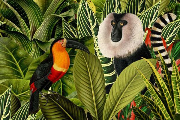 Kinderkamer Jungle Behang : Behang jungle dieren van studio poppy panda aap toekan beer