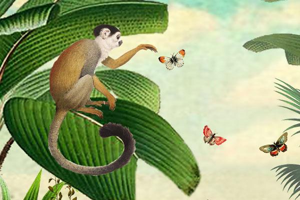Kinderkamer Jungle Behang : Tropisch oerwoud behang als eyecatcher dan ben je bij studio
