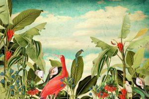 Botanisch behang of canvas met bananenblad en tropische vogels.