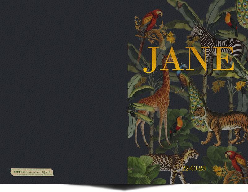 Hip geboortekaartje jungle met foliedruk. De goudfolie spat van het papier af! Mooi trendy geboortekaartje met tijger, giraffe, zebra, panter, luipaard, pauw, papegaai en toekan. Botanische jungle geboortekaartje dat tijdloos is.