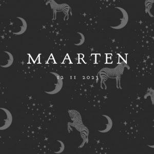 Geboortekaartje stipjes maan sterren voor een bohemian gevoel. Natuurlijke elementen komen veel terug in de geboortekaartjes van Studio POPPY. Maan, sterren, jungle dieren, botanische elementen. Kortom een geboortekaartje volgens de laatste trends. Ontwerp jouw persoonlijke kaart in de ontwerptool.