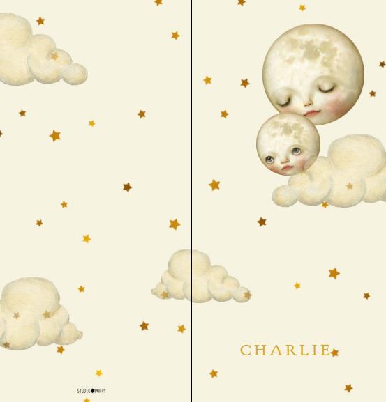 Romantisch geboortekaartje met maan en sterren in zachte poedertinten. Illustratief geboortekaartje welke ook in foliedruk geleverd kan worden. Vraag eens een gratis proefdruk aan.