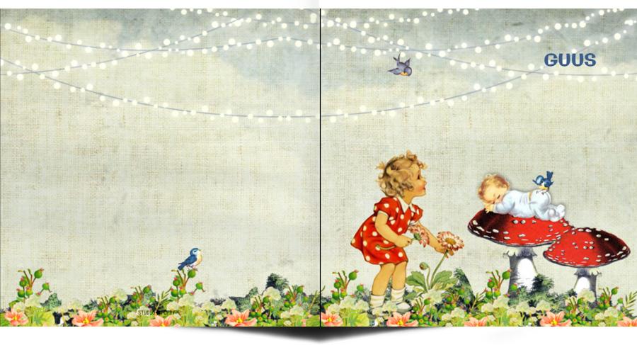 Retro geboortekaartje met afbeeldingen van vroeger. De paddestoel met baby is zo schatiig en retro. Een wiegje, takje, vogeltje, het maakt het tot een vertederend en lief geboortekaartje. Met vintage elementen en retro elementen is het een tijdloos geboortekaartje. Vraag eens de gratis proefkaart aan.
