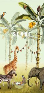 Een hip en trendy geboortekaartje in de jungle met olifant, zebra en giraffe. De jungle dieren staan bij elkaar om het pasgeboren kindje te bekijken. De leukste geboortekaartjes van Studio POPPY vind je hier. Met de ontwerptool kun je jouw hippe geboortekaartje ontwerpen zoals jij dat wil. Vraag eens een proefdruk aan.