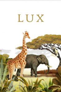 Geboortekaartje giraffe botanisch jungle savanne. Alle jungle dieren zijn vertegenwoordigd, de giraffe, olifant, zebra. Dit vintage kaartje gaat helemaal met de laatste trends mee. Met de gratis proefdruk.