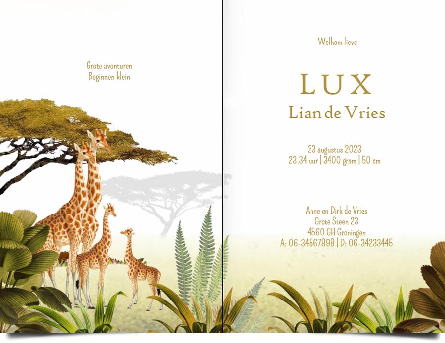 Geboortekaartje giraffe botanisch jungle