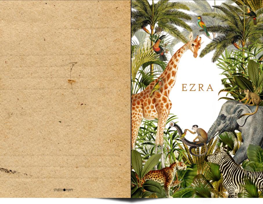 Jungle vintage geboortekaartje met weelderige planten en jungle dieren is een bijzonder vintage geboortekaartje voor jullie kindje. Illustratief en heel erg hip. Met de online editor kun je zelf aan de slag om hem helemaal uniek te maken. Vraag van dit jungle geboortekaartje eens een gratis proefdruk aan.