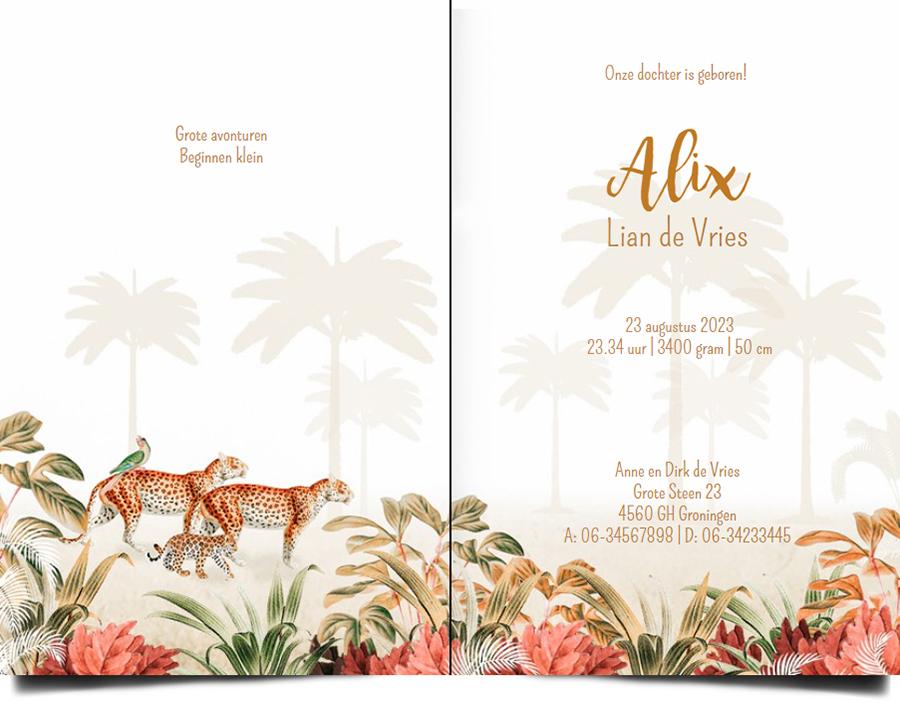 Een heel stijlvol geboortekaartje jungle met panters en palmbomen. Beetje retro vintage maar vooral een heel illustratief geboortekaartje waar je zelf items aan toe kunt voegen of kunt weghalen. Experimenteer ook zelf eens met de kleuren. Een gratis proefkaartje is een aanrader.